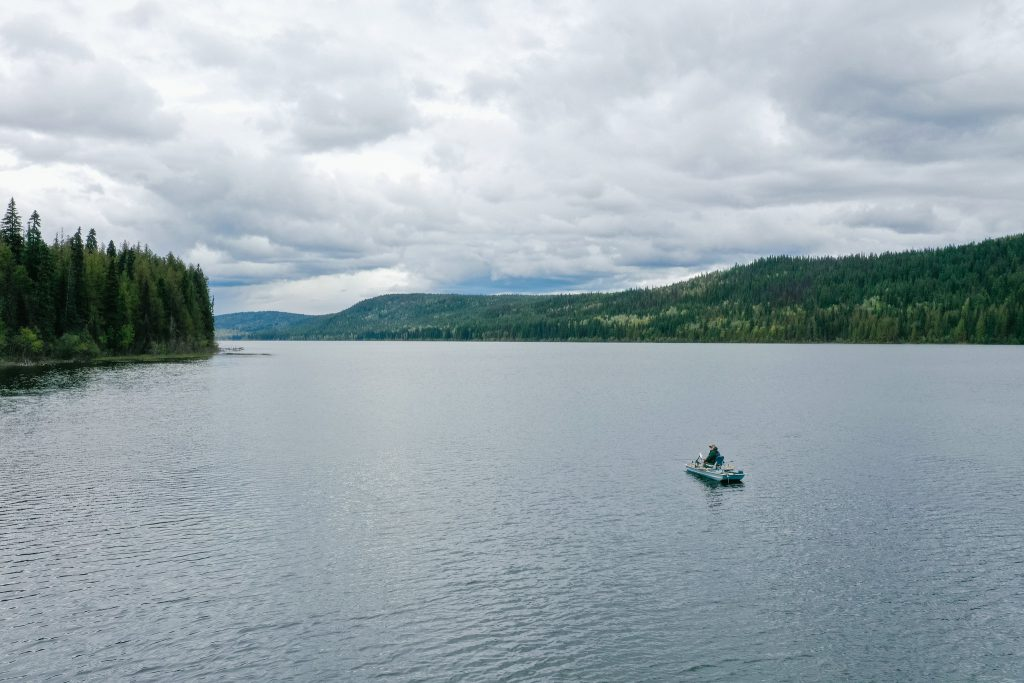 Mount Polley remediation efforts have helped restore habitats around Polley lake